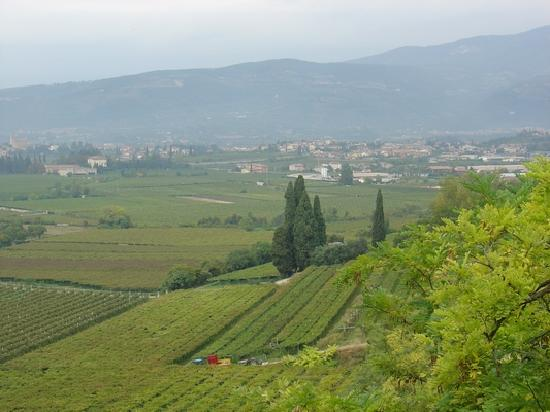 La Colombara: View of Valpolicella Valley from Housea