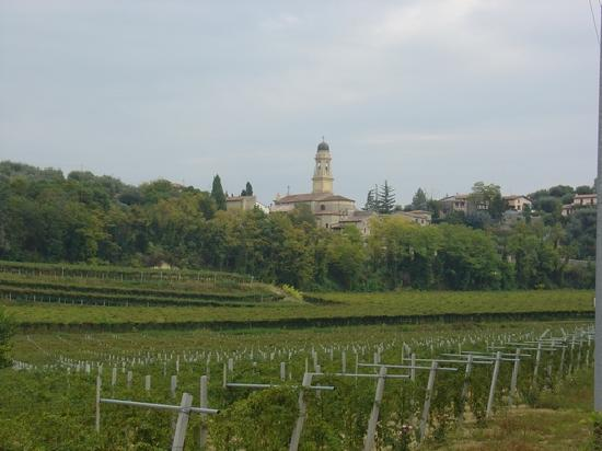 La Colombara: Castelrotto Church and Vineyards