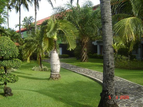Bali Dynasty Resort Hotel: Nice Gardens