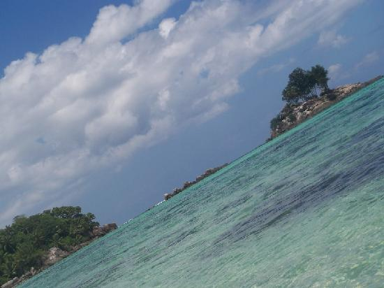 Driftwood: Anse Royale