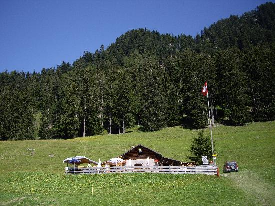 Maienfeld, Switzerland: おんじの山小屋