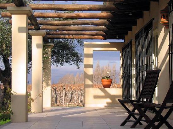 Conalbi Grinberg Casa Vinicola: Paradise