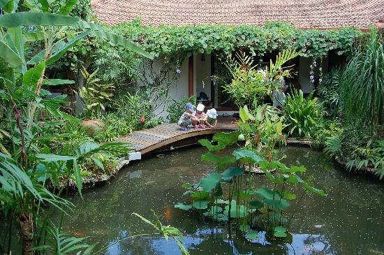 Koi pond picture of shiva samui laem set tripadvisor for Koi pond quezon city