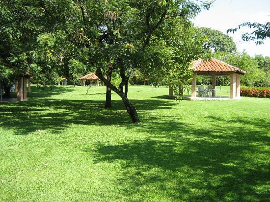 Las Hojas Resort & Club: Decamero Salinitas, impresionante