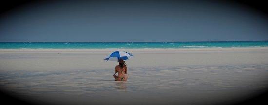 Anantara Medjumbe Island Resort: una postal