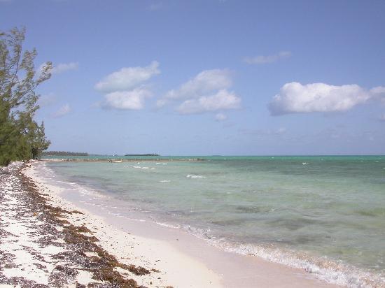 Seascape Inn, Andros : Yet More Beautiful Beach