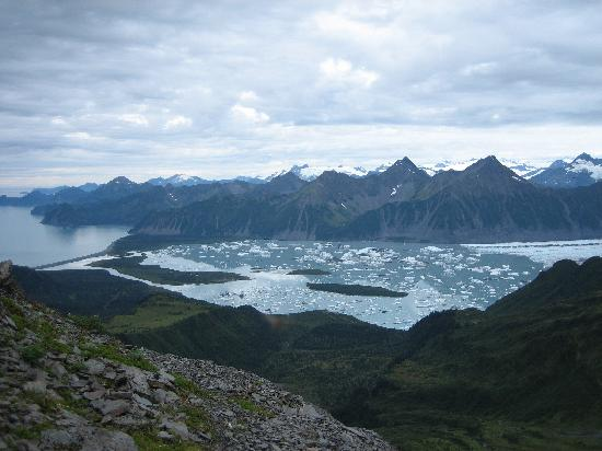 Bear Glacier view from upland