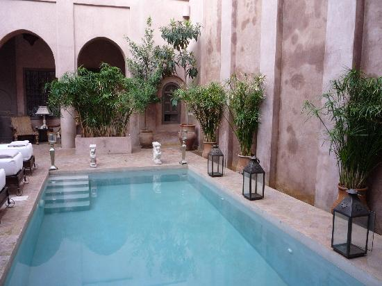 Riad Noir d'Ivoire: View of the pool from the gym