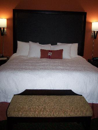 Hampton Inn & Suites Waco South: Room