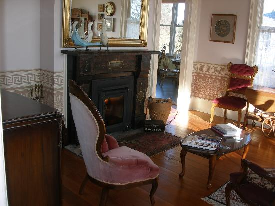 Blue Goose Inn Bed and Breakfast : Cozy fireplace in the common living room