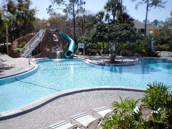 closest pool picture of sheraton vistana resort villas lake buena vista orlando tripadvisor