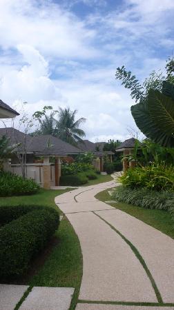 Amorita Resort: pathway to the rooms