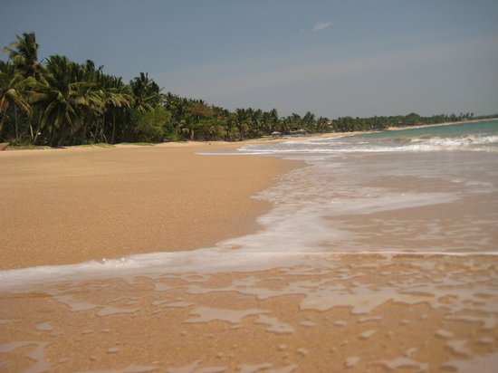 Sri Lanka : The beach outside Coconut Beach Cabanas. Beautiful.