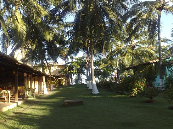 Itacimirim: view of the garden