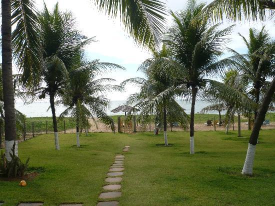 Itacimirim: the path to the beach