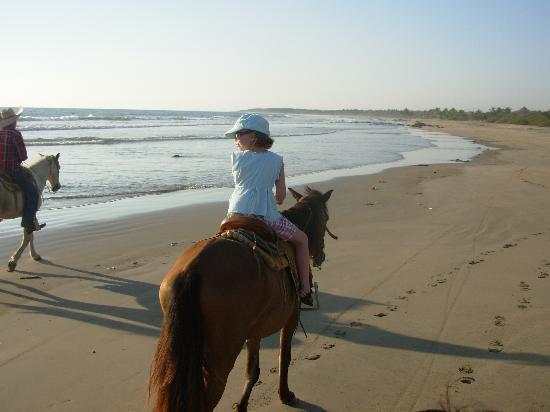 Tronco Bay Inn Resort: sunset horseback ride
