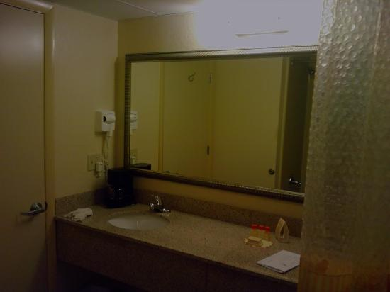Regency Inn and Suites: Bathroom