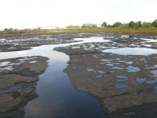 La Brea Pitch Lake: You can soak in sulfuric waters on top of pitch lake