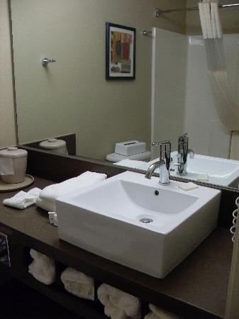 La Quinta Inn & Suites Locust Grove : Bathroom - sink & shower