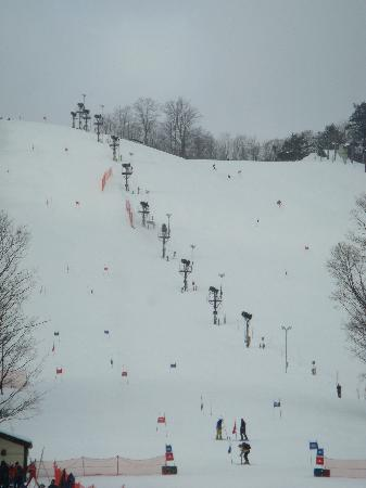Boyne Highlands Resort: Boyne Highlands