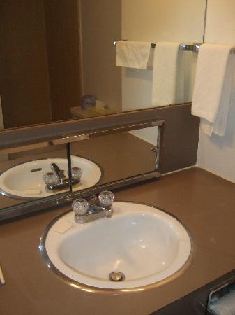 Auberge Mont-Habitant : Washroom