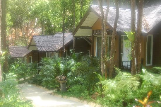 Nisa Cabana Koh Chang Resort: Look at the morning time it's cool