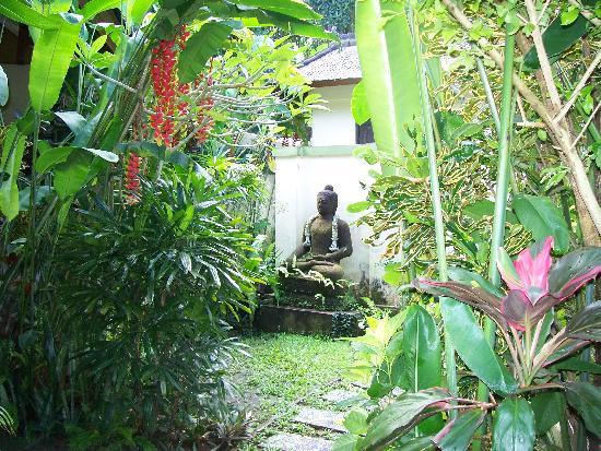 LadyBamboo Villa: delightul garden