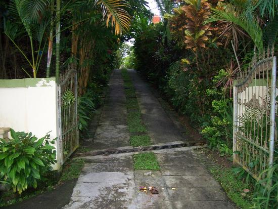 LadyBamboo Villa: Villas hidden away down the driveway