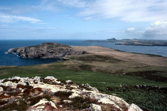 Voyages of Discovery (Ramsey Island): St Davids Head from Ramsey Island