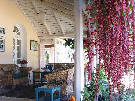 Glenburn Tea Estate: The verandah.