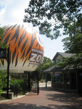 Filadelfia, PA: The zoo offers hot air balloon rides.