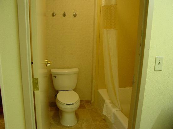 Hampton Inn Davenport : room