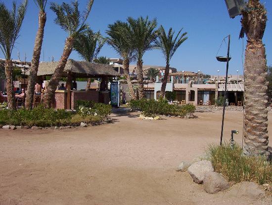 Coral Sea Sensatori - Sharm El Sheikh : Beach Bar