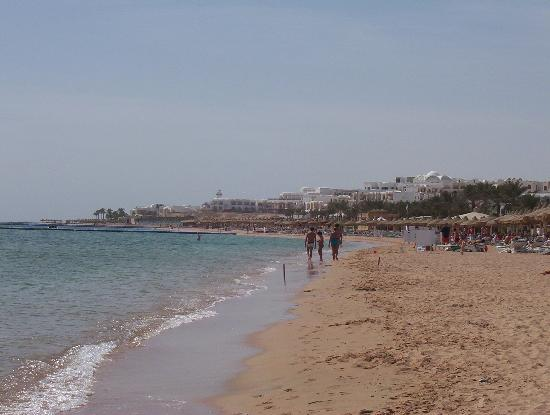 Coral Sea Sensatori - Sharm El Sheikh : Beach