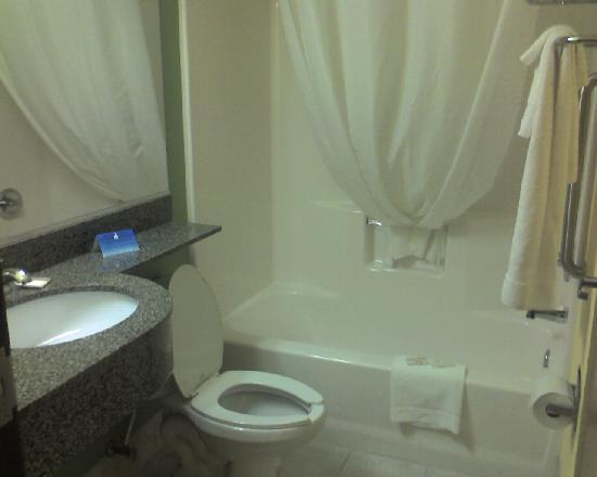 Microtel Inn & Suites by Wyndham Delphos: Bathroom