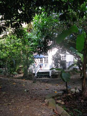 Gibney Beach Villas: Same view as Garden Cottage on Web