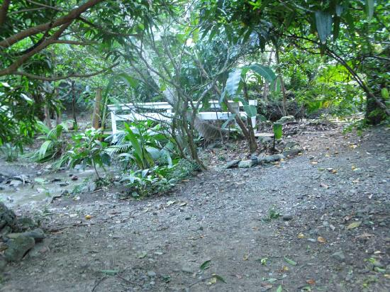 Gibney Beach Villas: Front Yard