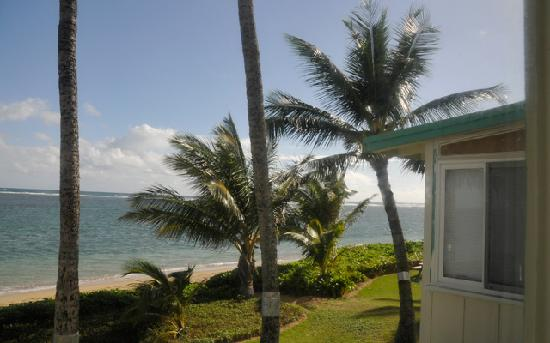 Pat's at Punalu'u : Looking out the window of Sunrise Beach Cottage
