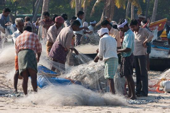 The Beach at Pollethai: Sorting nets