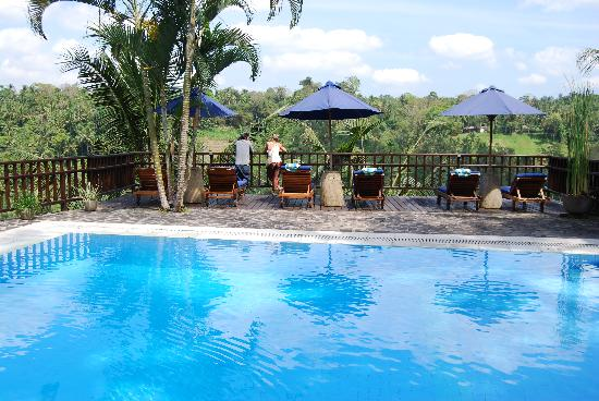 Villa Indah Ubud: beautiful swimming pool over gorge