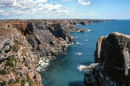 Pembrokeshire, UK: Stack Rocks