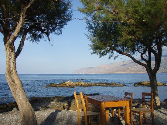 Flisvos Taverna: Dine under the tamarisk at Flisvos