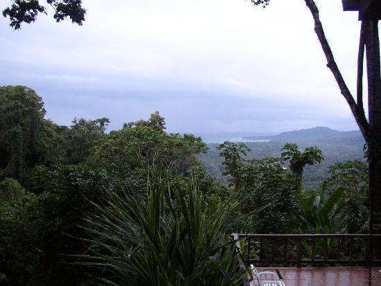 Samasati Retreat & Rainforest Sanctuary: The Amazing View 2