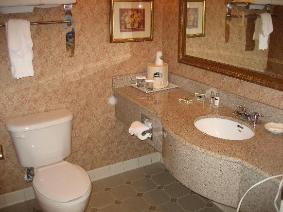 Wingate by Wyndham Orlando International Airport: bathroom