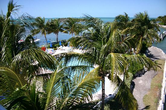 The Hammocks at Marathon: View from Room 2