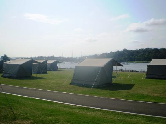 Cockatoo Island Camping: Tents