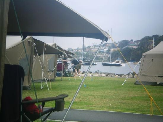 Cockatoo Island Camping: View from my campchair