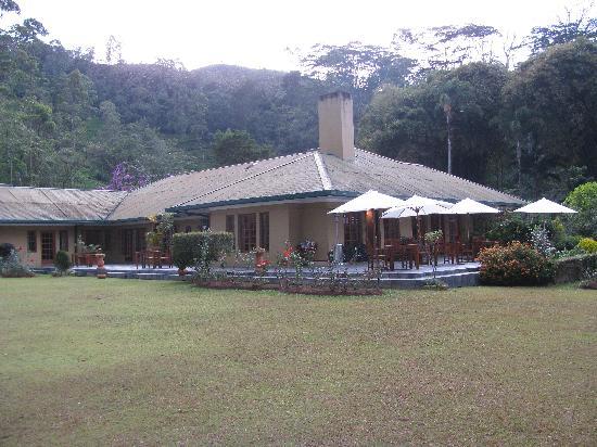 Ceylon Tea Trails : norwood