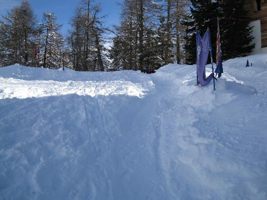Swiss Family Hotel Alphubel: slope at side of hotel for sledging