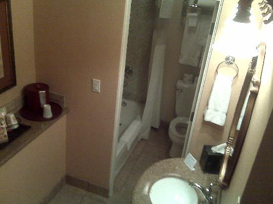 Quality Inn & Suites Airport: bath/shower area